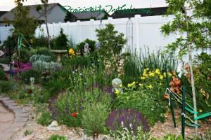 bright colors garden