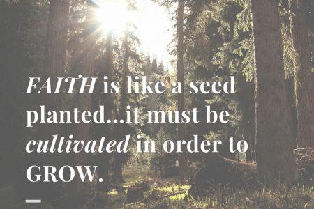 faith is like a seed